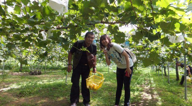 H29年9月 ぶどう梨狩りツーリング